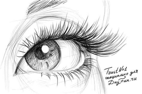 Drawing Eyelashes by How To Draw Eyelashes Step By Step Arcmel