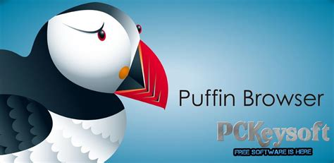 puffin web browser pro apk puffin browser pro apk version with version