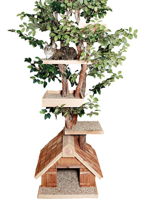 cat tree house mature large cat tree house