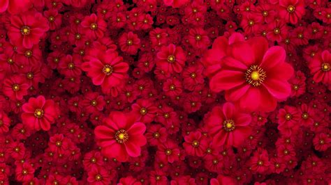 cool flower backgrounds cool flowers moving background hd 1080p