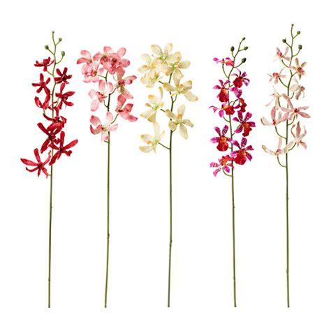 fiori ikea d 233 coration cadres et photos bougeoirs et bougies et