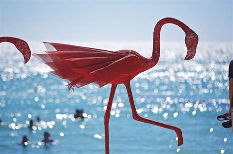 by the sea 2015 mark your calendars for sculpture by the sea cottesloe