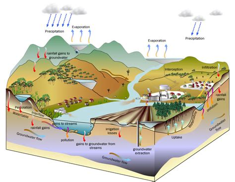 groundwater diagram hydrological cycle and groundwater water balance