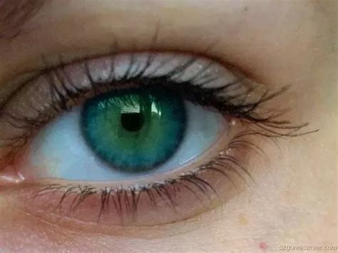 most eye color which eye colour is the most attractive in the world quora