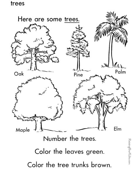 tree to color trees coloring page to print and color preschool tree