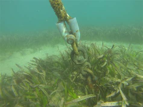 boat mooring moreton bay block and chain moorings in sensitive habitats