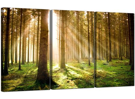 cheap trees uk cheap trees canvas prints 3 panel for your dining room