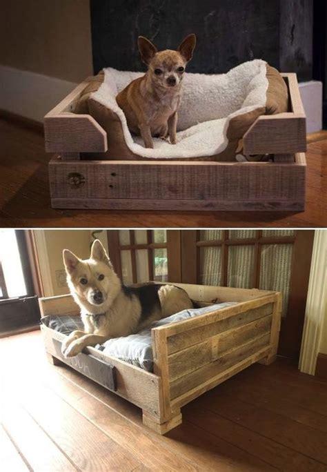 creative dog bed design ideas homemydesign