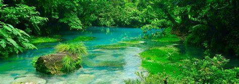 Amazing Garden by Hotel Rio Celeste Hideaway Costa Rica Luxury Hotels