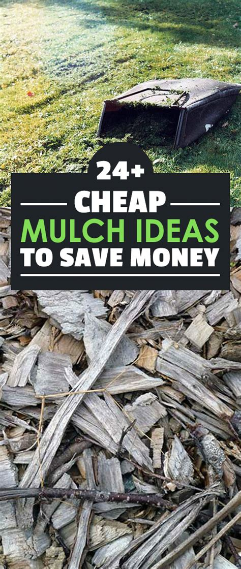 24 cheap mulch ideas to save money