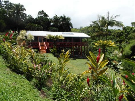 real estate in fiji houses for sale real estate in fiji houses for sale 28 images luxury real estate in savusavu