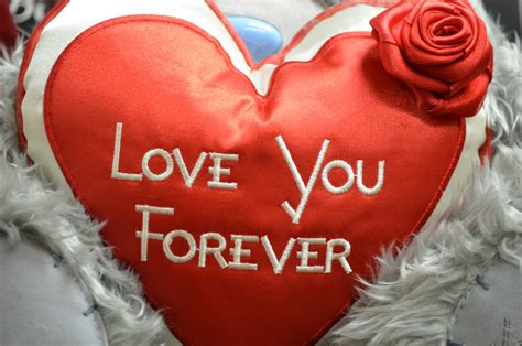 Images Of Love U Forever | love you forever free stock photo public domain pictures
