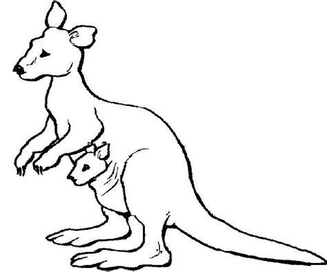 kangaroo coloring pages preschool katy no pocket kangaroo template around the world