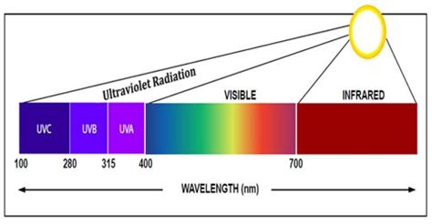 Ultraviolet Light Definition by About Ultraviolet Radiation Assignment Point