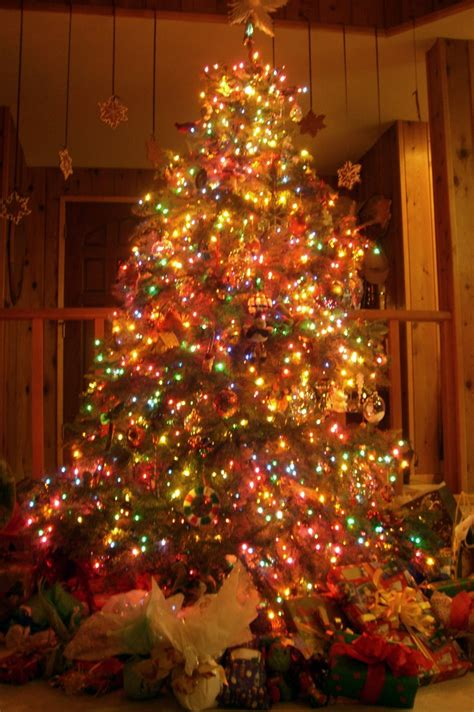 small tree lights decoration ideas guide to buy bedroom blackout curtains