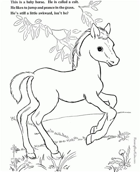 horse coloring pages online free online horses coloring pages for kids 8qgdr coloring