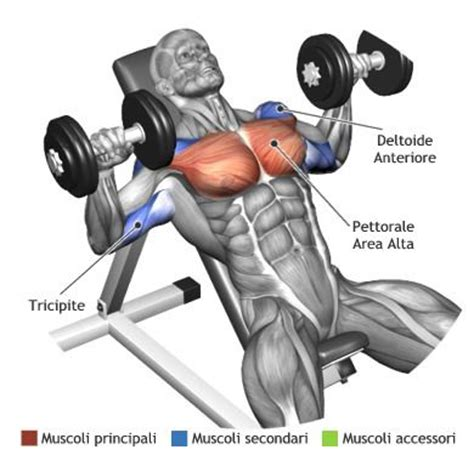 incline bench press at home mens complete chest workouts