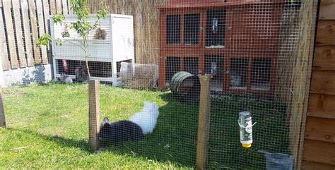 Rabbit Hutch Plans Outdoor Rabbit Cages Lionheadrabbit Com