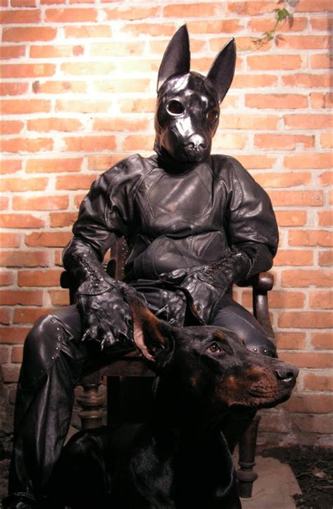 puppy in a suit leather suit by bob basset pups