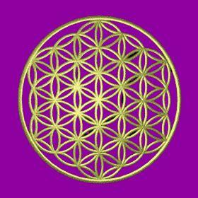 ama vive humanizate todos somoa uno geometr 205 a sagrada ama vive humanizate todos somos uno