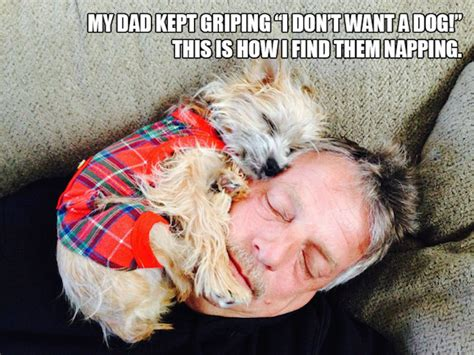 turns  dads    dont  dogs  filthy
