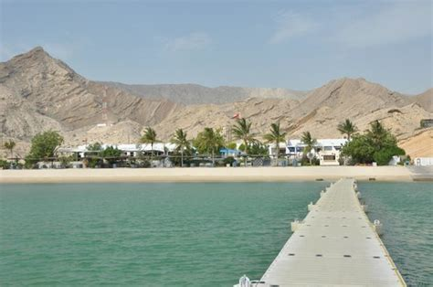 oman dive centre the lagoon picture of muscat resort muscat