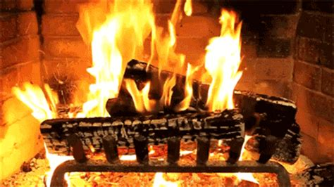 Fireplace Meme - yule log fireplace gif find share on giphy