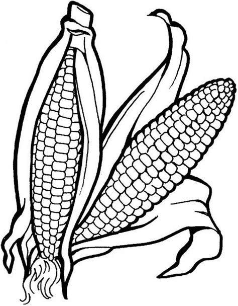 autumn vegetables coloring pages 62 best autumn draw images on pinterest fall leaves and