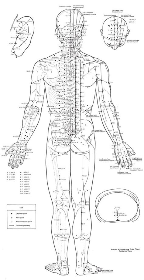 acupressure diagram of pressure points best 25 acupuncture points chart ideas on