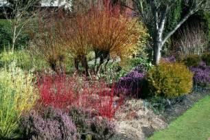 garden winter garden the winter gardens at cambridge 169 stuart logan cc by sa