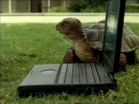 comcast  slowskys turtle commercials push  youtube