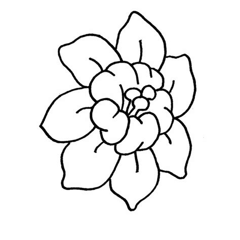 imagenes naturales para colorear dibujos de flores modernas para colorear