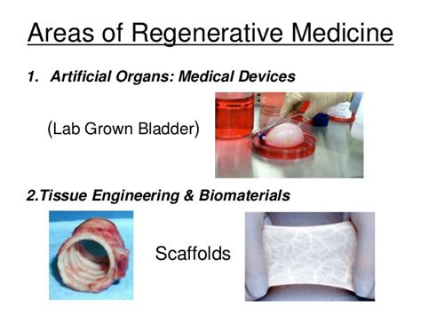 the miracle of regenerative medicine how to naturally the aging process books tissue engineering regenerative medicine