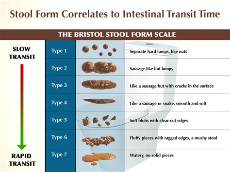 Can You Be Constipated With Soft Stool 12 ways to overcome constipation drjockers