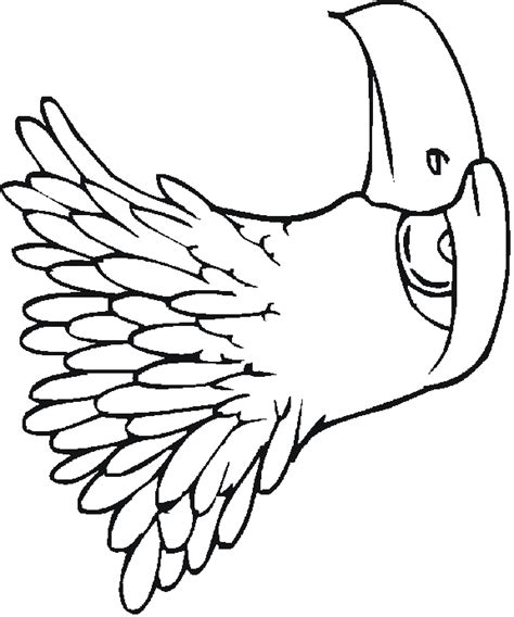 patriotic eagle coloring pages free patriotic coloring pages from sherriallen com