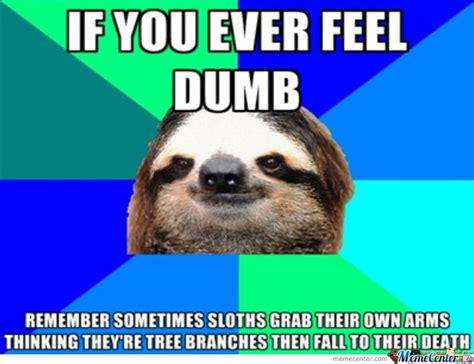 angry sloth quotes quotesgram
