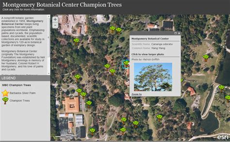 tree mapping software free create customized mapping applications using esri s web