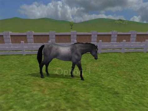 download free full version horse games zoo tycoon 2 van dam horse stud youtube