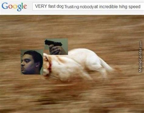 how fast do dogs run fast running at hihg speed memes best collection of
