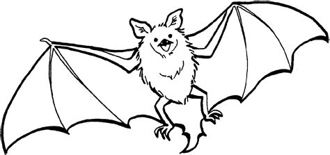 coloring page for bat bat coloring pages