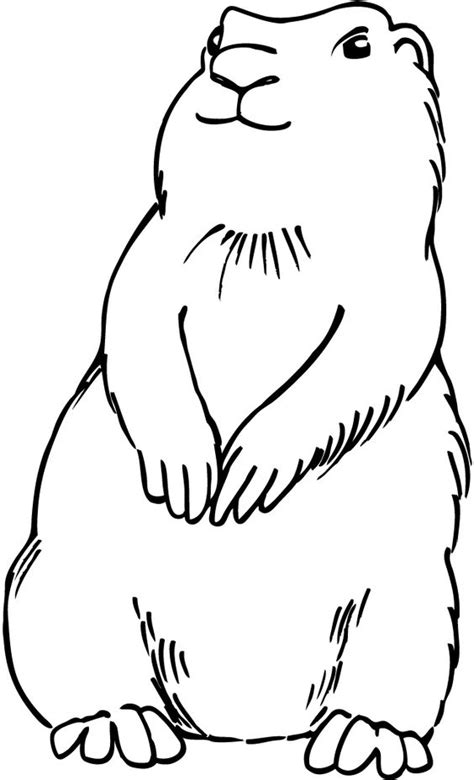 coloring pages of prairie dogs prairie template for fuzz decorating storyhour