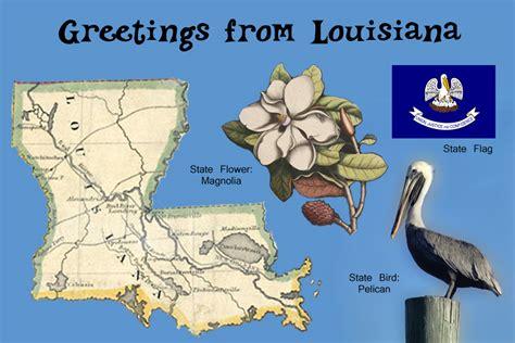 Louisiana State Bird And Flower - thanksgiving roadtrip just another wordpress com weblog