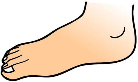 gambar tato kartun di kaki kosa kata bahasa arab anggota badan tpq nur azizah