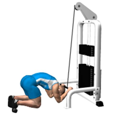 flat bench leg pull in crunch exercise abdominals the best exercises to train abdominals