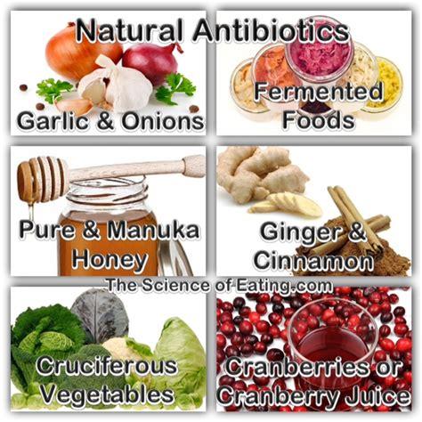 nature food antibiotics the science of