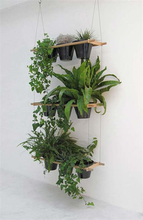 hanging plants 25 indoor garden ideas your no 1 source of architecture