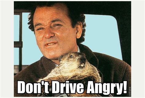 groundhog day quote god phil groundhog day quotes quotesgram