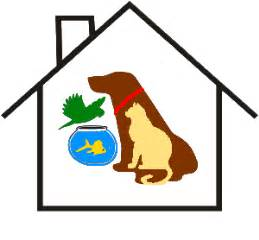 house siting tallahassee pet sitter
