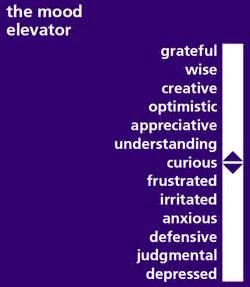 Purple Mood culture success story mood elevator kentucky one online