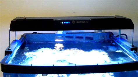 29 gallon biocube lighting upgrade another update 29 gallon biocube youtube
